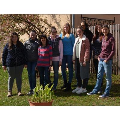 Lichtblick_Team